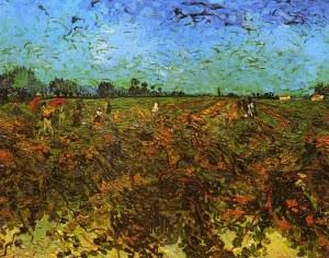 green vineyard.jpg