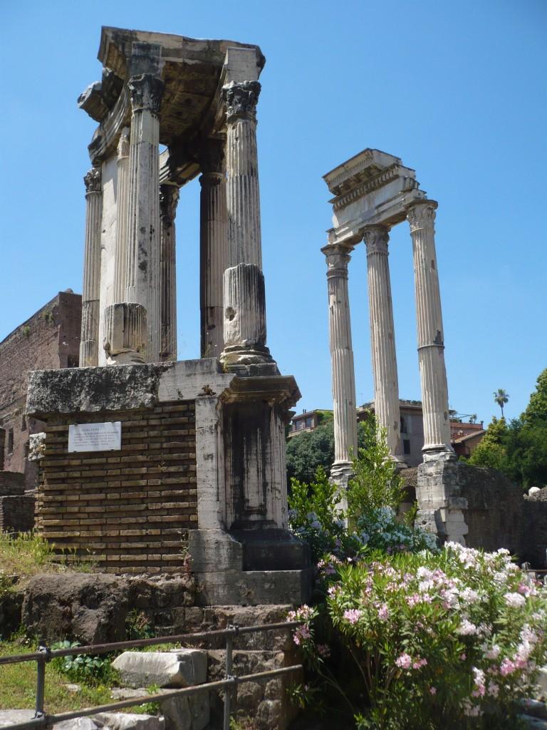 forum columns